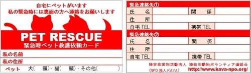 レスキューカード.jpg