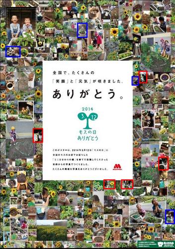 mosnohi_poster.jpg